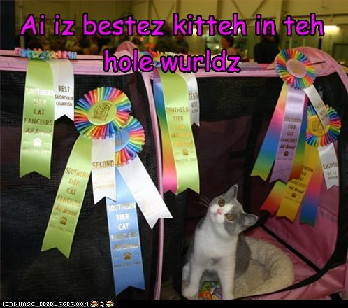 Ai iz bestez kitteh in teh hole wurldz