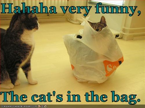 Hahaha very funny,  The cat's in the bag.