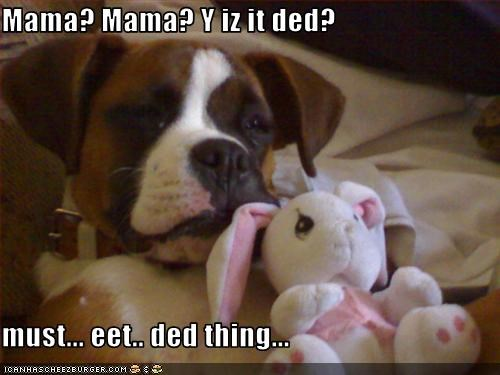 Mama? Mama? Y iz it ded?  must... eet.. ded thing...