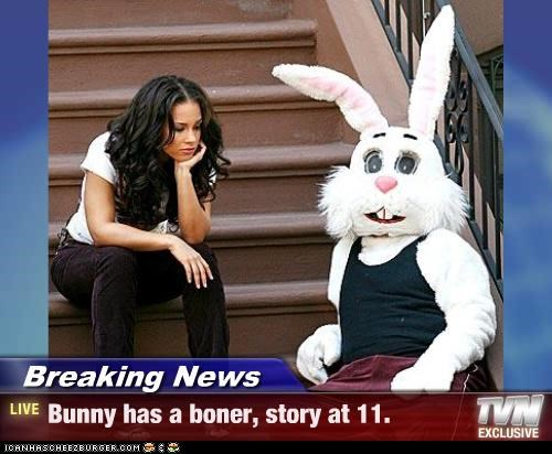 Breaking News - Bunny has a boner, story at 11.