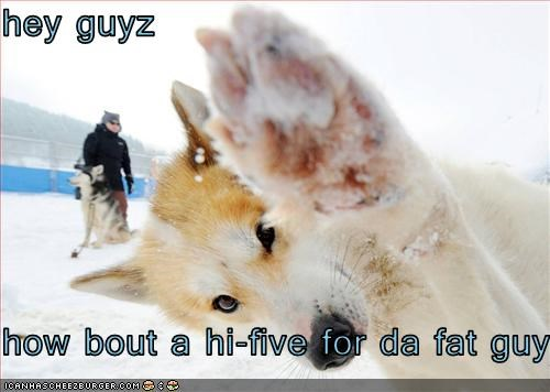 hey guyz  how bout a hi-five for da fat guy