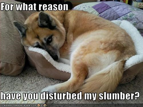 For what reason  have you disturbed my slumber?