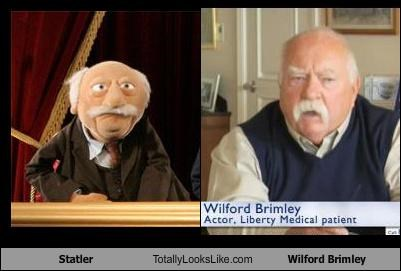 Statler Totally Looks Like Wilford Brimley