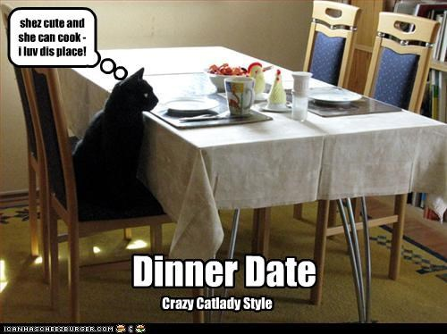 crazy cat lady,dating,dinner,happy