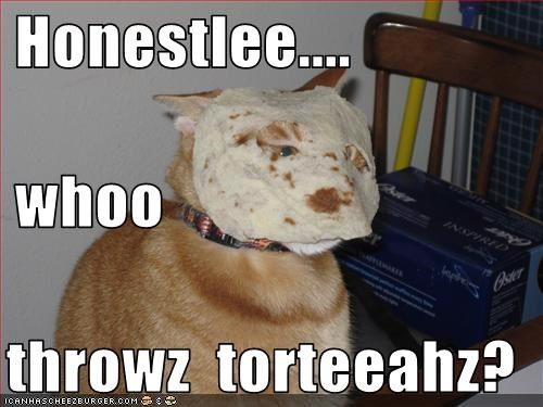 Honestlee....  whoo  throwz  torteeahz?