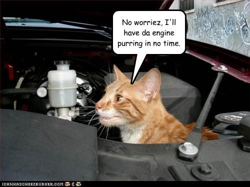 No worriez, I'll have da engine purring in no time.