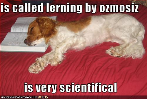 is called lerning by ozmosiz  is very scientifical