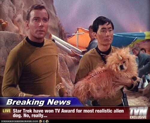Breaking News - Star Trek have won TV Award for most realistic alien dog. No, really...