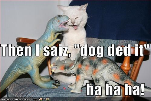 "Then I saiz, ""dog ded it"" ha ha ha!"