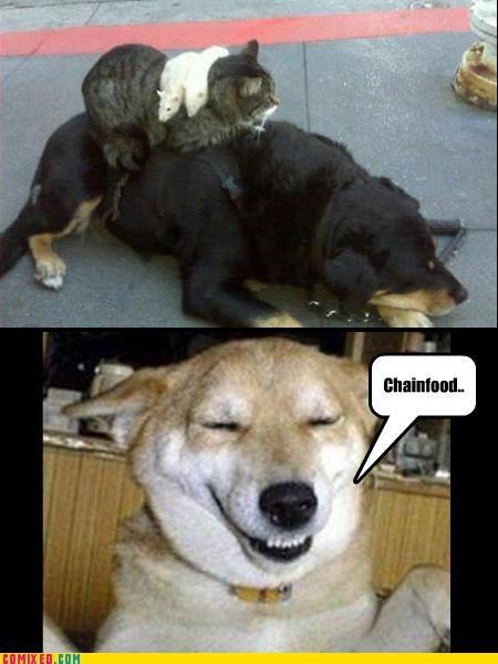 Chainfood