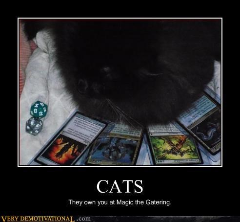 Black Cat, Black Magic (the Gathering)