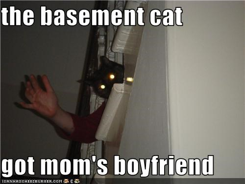 the basement cat   got mom's boyfriend