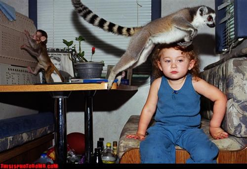 Animal Bomb,animals,awesome,baby