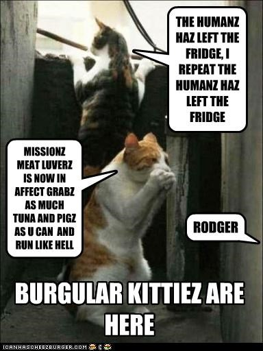 FRIDGE BURGULARS