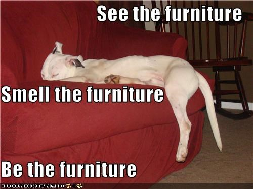 See the furniture Smell the furniture Be the furniture