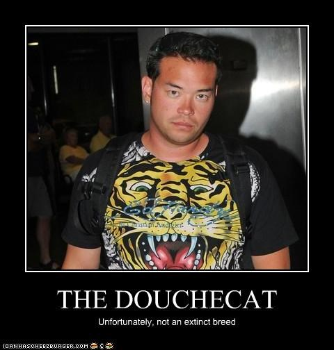 THE DOUCHECAT