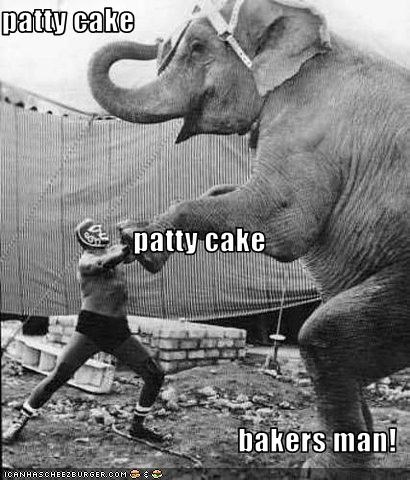 patty cake patty cake  bakers man!