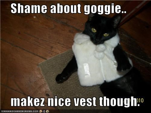 Shame about goggie..      makez nice vest though.
