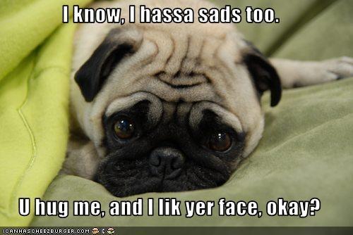 I know, I hassa sads too.  U hug me, and I lik yer face, okay?