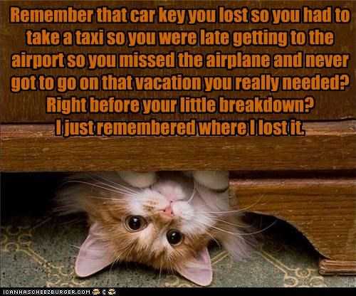 Remember that car key you lost so you had to take a taxi so you were late getting to the airport so you missed the airplane and never got to go on that vacation you really needed? Right before your little breakdown?  I just remembered where I lost it.
