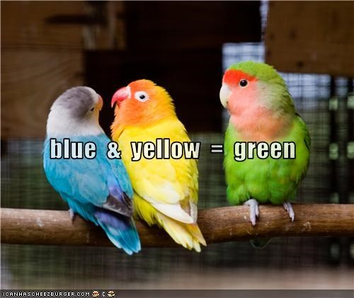 blue  &  yellow  =  green