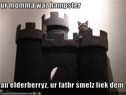 castle,insults,mean,monty python,movies,scratching posts