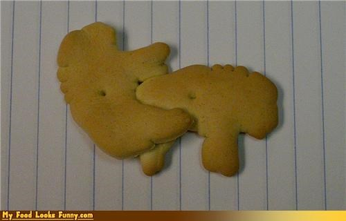 How Animal Crackers are Made
