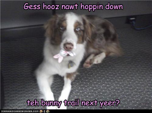 Gess hooz nawt hoppin down