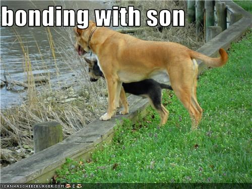 bonding with son