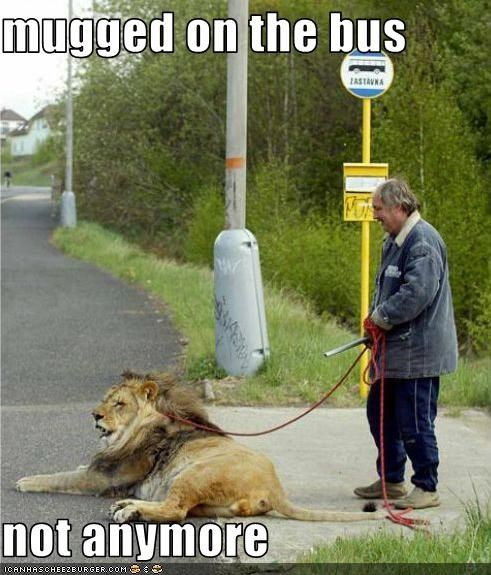 lollions,security system