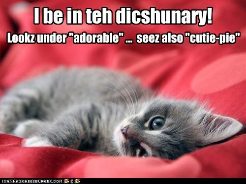 I be in teh dicshunary!