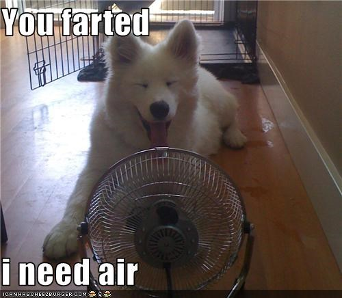 You farted  i need air