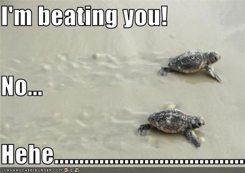 I'm beating you! No... Hehe............................................................................................
