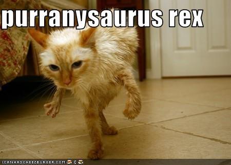 dinosaur,look a like