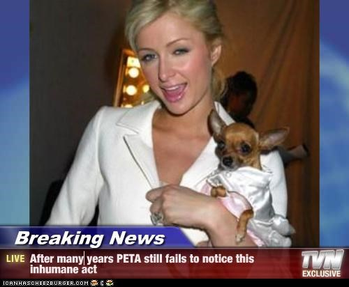 Breaking News - After many years PETA still fails to notice this inhumane act