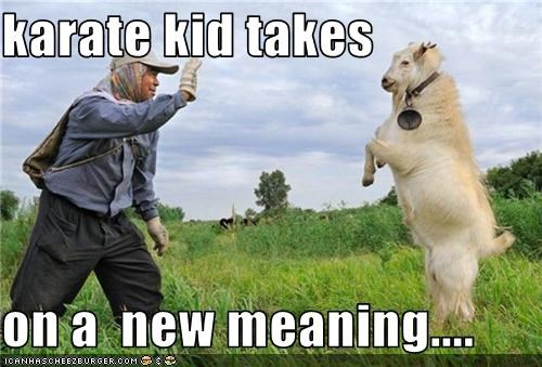 karate kid takes   on a  new meaning....