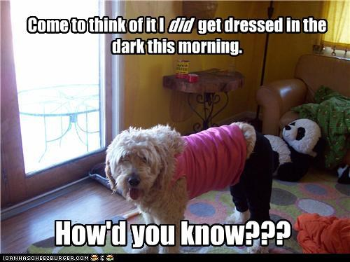 Come to think of it I           get dressed in the dark this morning.