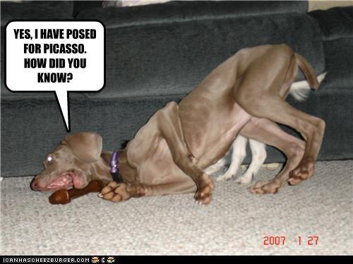 art,bone,contorted,hound mix,model,picasso,pose,toy,twist