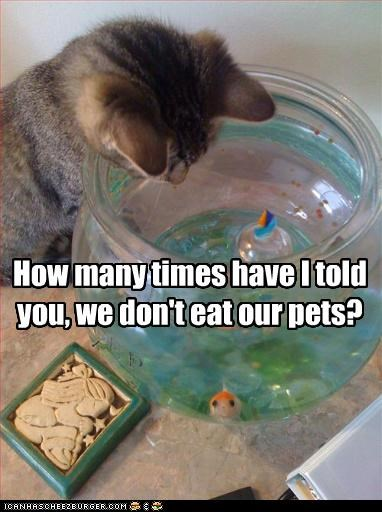 How many times have I told you, we don't eat our pets?
