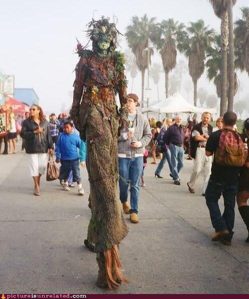 beach,costume,ent,fashion,mythical beast,wtf