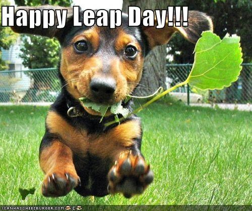 Happy Leap Day!!!
