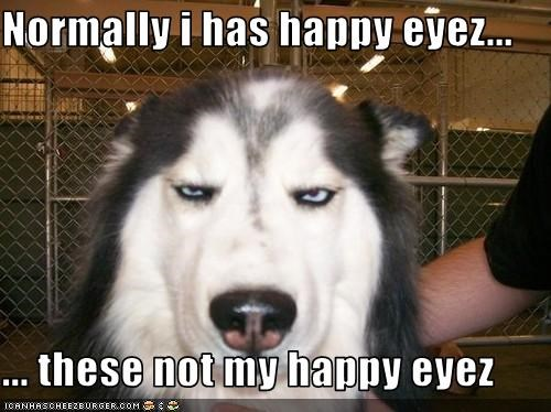 Normally i has happy eyez...  ... these not my happy eyez