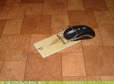 computer,doing it wrong,mouse,trap