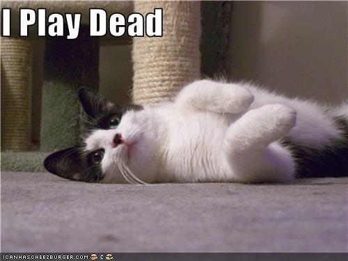 I Play Dead