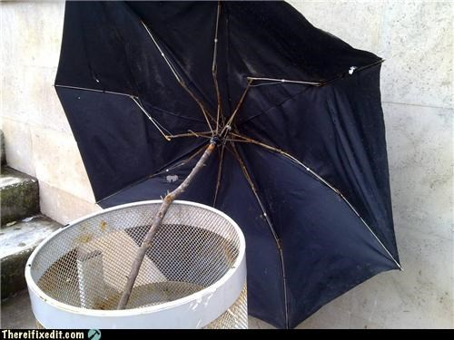 Who Throws Out A Perfectly Good Umbrella?