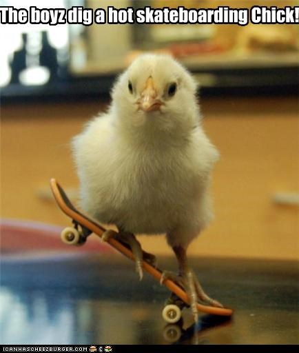 The boyz dig a hot skateboarding Chick!