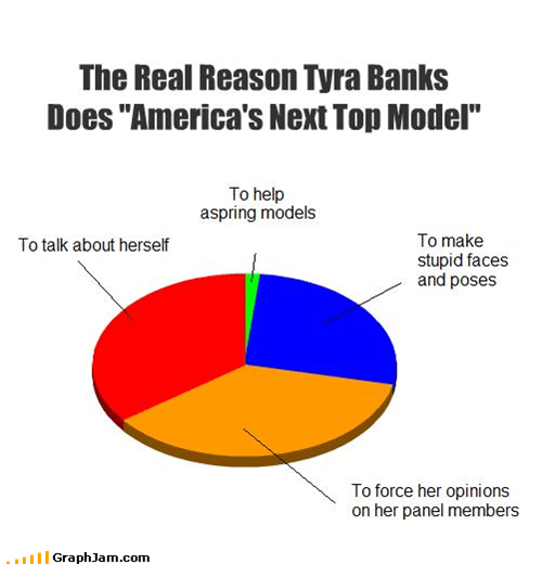 Americas Next Top Model,face,models,opinions,panel,Pie Chart,pose,reality tv,stupid,supermodels,talk,TV,Tyra Banks