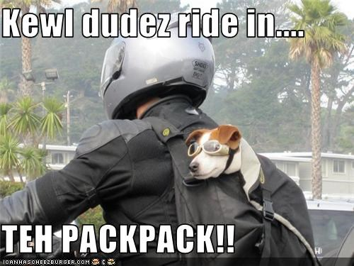 Kewl dudez ride in....  TEH PACKPACK!!