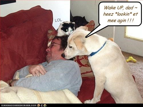 Wake UP, dad ~ heez *lookin* et mee agin ! ! !