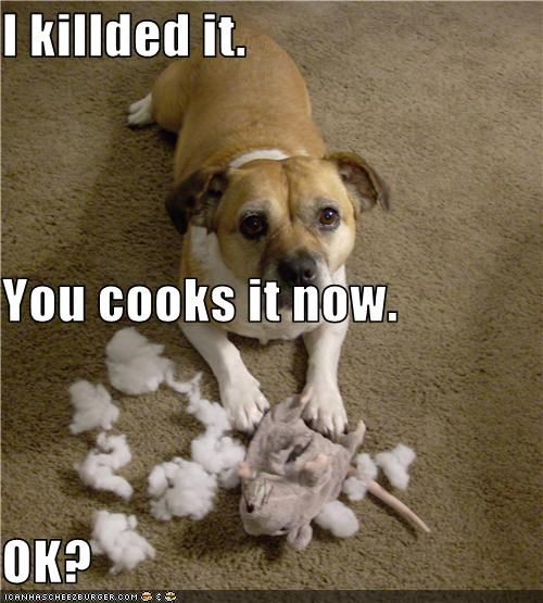 I killded it. You cooks it now. OK?